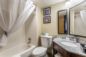 Comfort Inn & Suites Albuquerque - Guest Bathroom